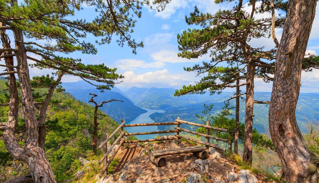 Viewpoint - Tara mountain, West Serbia