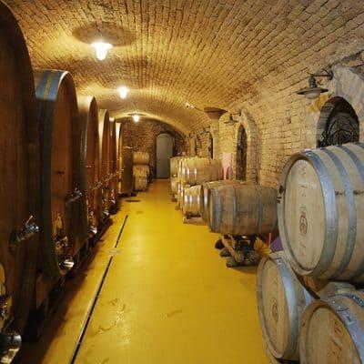 Fruškogorska wine tour