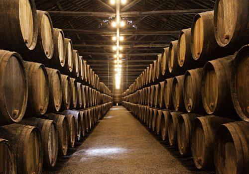Serbian Tuscany wine tour